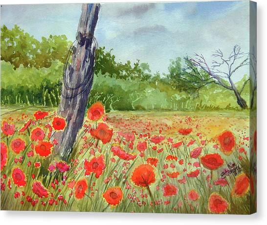 Field Of Red Flowers Canvas Print