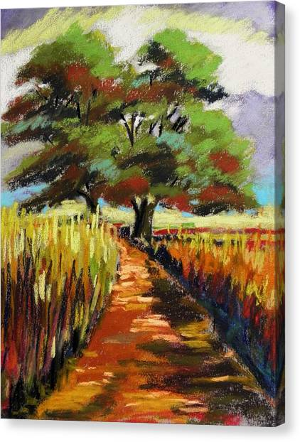 Field Road Canvas Print