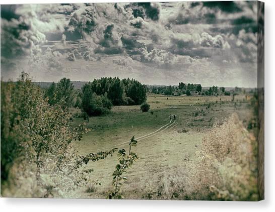 Field Road. Zamistya, 2013. Canvas Print