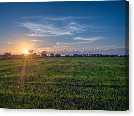 Field Sunset Canvas Print