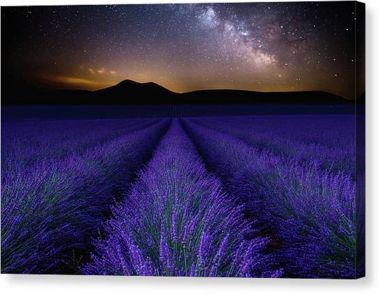 Fields Of Eden Canvas Print