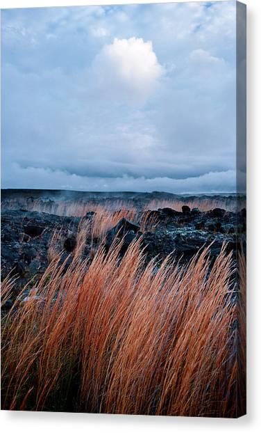 Fields Of Fire Canvas Print