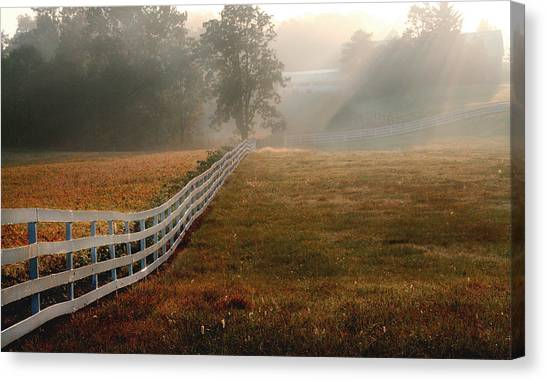 Fields Of Gold  Canvas Print by Monika A Leon