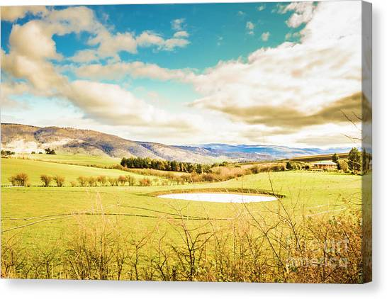 Grazing Canvas Print - Fields Of Plenty by Jorgo Photography - Wall Art Gallery