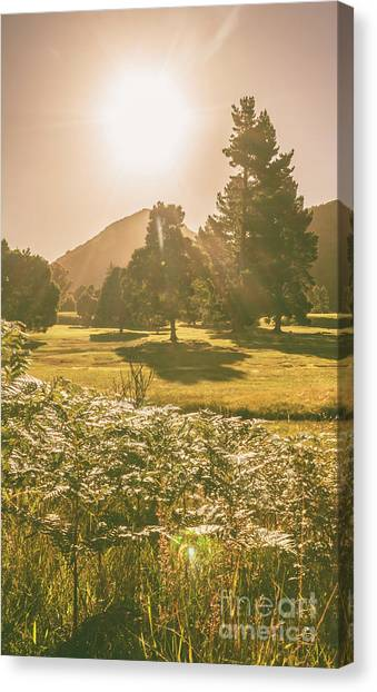 Rural Canvas Print - Fields Of Springtime by Jorgo Photography - Wall Art Gallery