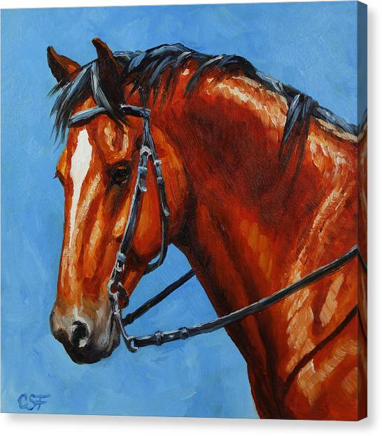 Bay Thoroughbred Canvas Print - Fiery Red Bay Horse by Crista Forest