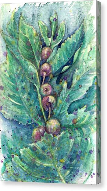 Figful Tree Canvas Print