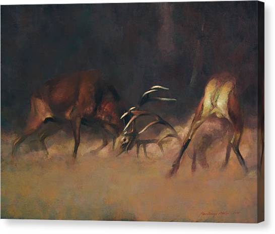 Fighting Stags I. Canvas Print