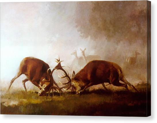 Fighting Stags II. Canvas Print