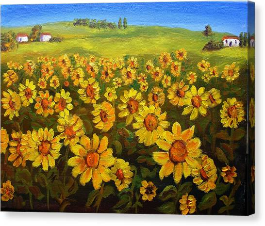 Filed Of Sunflowers Canvas Print by Mary Jo Zorad