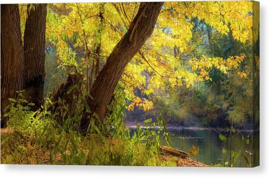 Filtered Light 2 Canvas Print