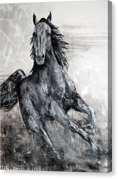 Fin Canvas Print