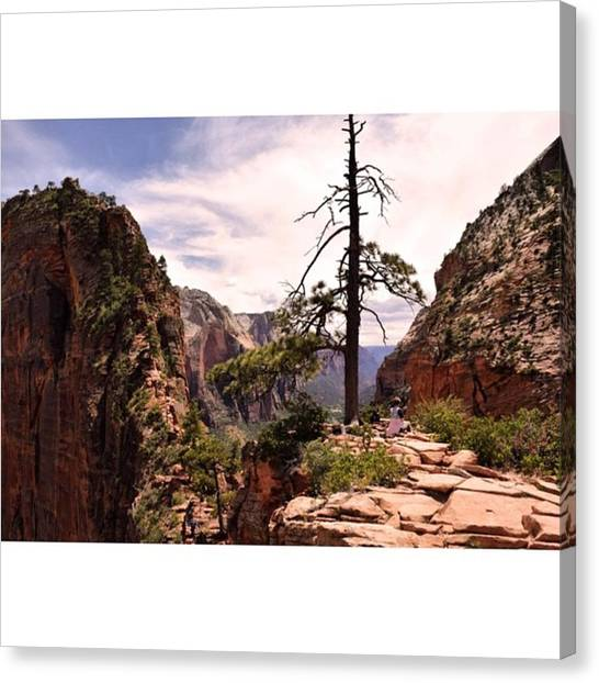 Scotty Canvas Print - Finally Made It To The Top Of Angels by Scotty Brown