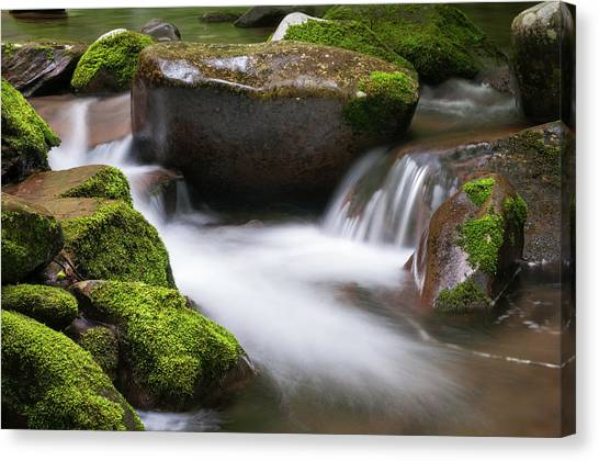 Find Your Path  Canvas Print by T-S Fine Art Landscape Photography