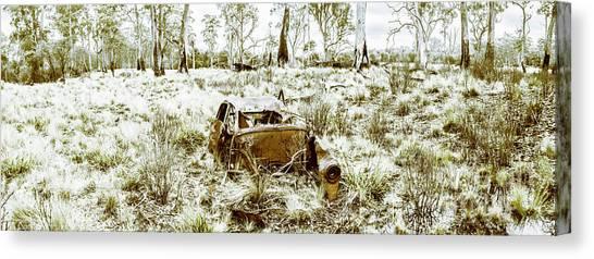 Desolation Canvas Print - Fine Art Tasmania Bushland by Jorgo Photography - Wall Art Gallery