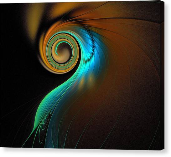 Apophysis Canvas Print - Fine Feathers by Amanda Moore