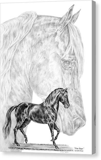 Fine Steps - Paso Fino Horse Print Canvas Print
