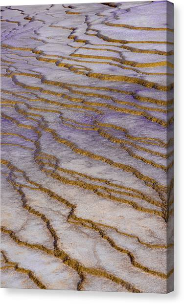 Fingerprint Of The Earth Canvas Print
