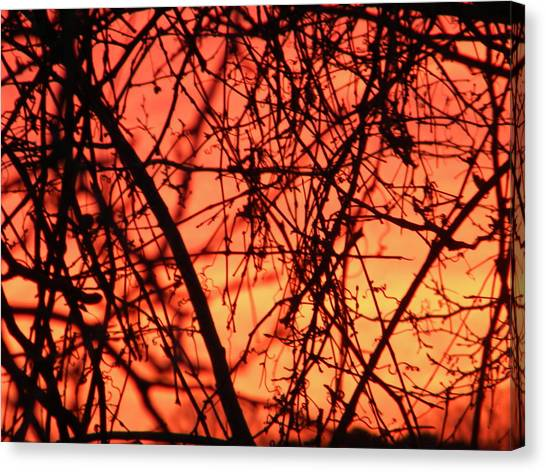 Fire Canvas Print by Cassandra Donnelly