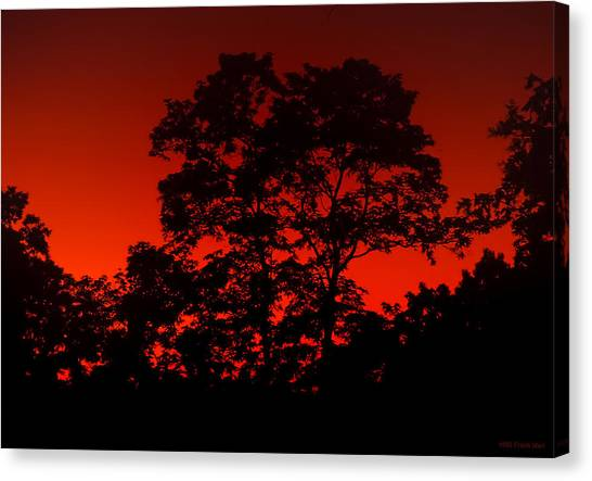 Fire In The Sky Canvas Print by Frank Mari