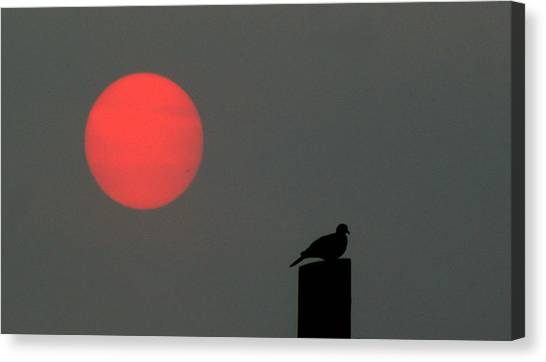 Fire Sun Sentinel Canvas Print