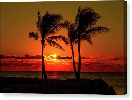 Fire Sunset Through Palms Canvas Print