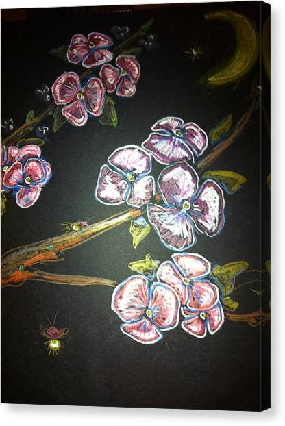 Fireflies And Dogwood Canvas Print