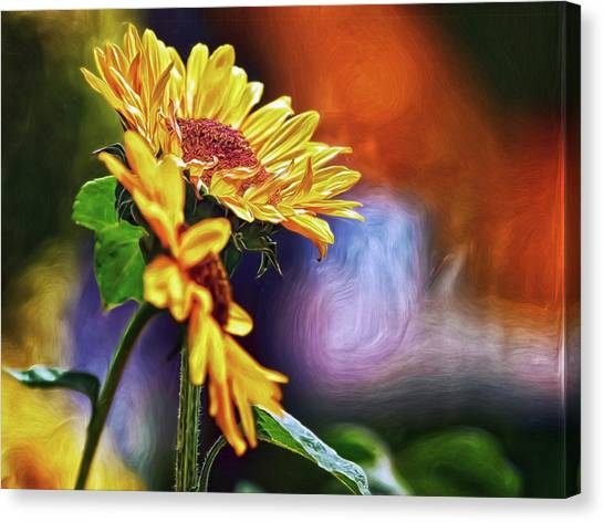 Canvas Print featuring the digital art Firelit Sunflowers by Doctor Mehta