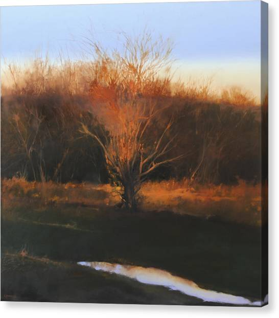 Fire Tree 2 Canvas Print