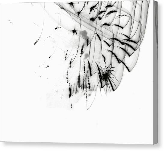 Firework Abstract 5 Canvas Print