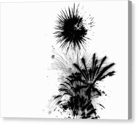 Firework Abstract 9 Canvas Print