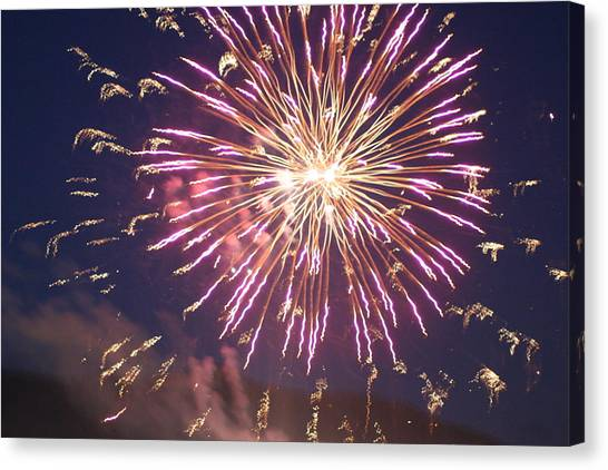 Fireworks In The Park 2 Canvas Print