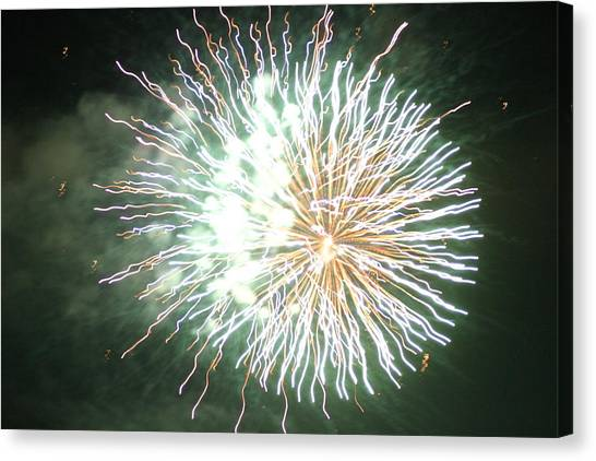 Fireworks In The Park 4 Canvas Print
