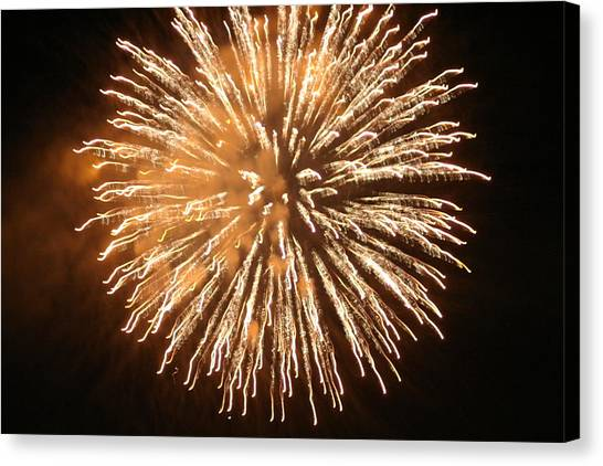 Fireworks In The Park 5 Canvas Print