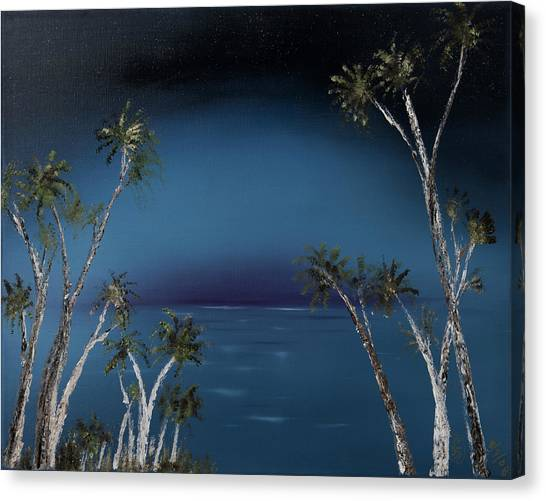 Fireworks Palms Canvas Print