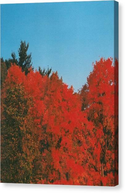 Firey Fall Canvas Print