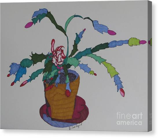 First Bloom Christmas Cactus Canvas Print by James SheppardIII