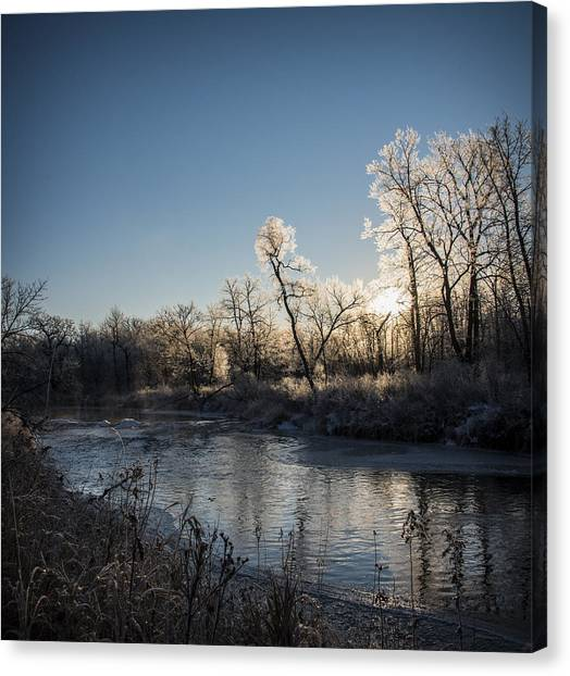 First Frost Canvas Print