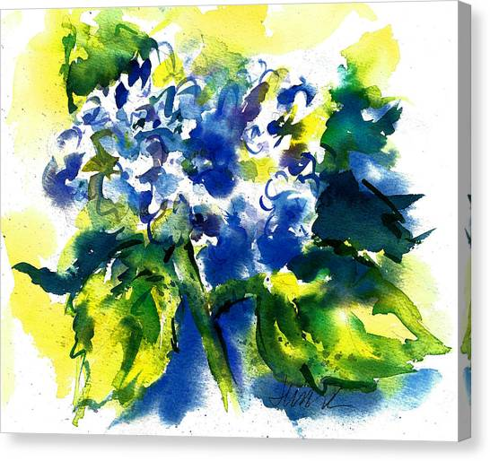 First Hydrangea Canvas Print