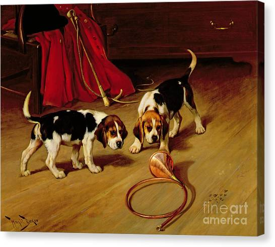 Beagles Canvas Print - First Introduction by Wright Barker