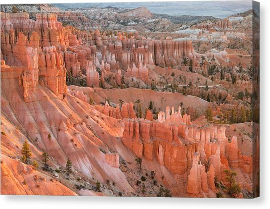 Canvas Print featuring the photograph First Light, Bryce Canyon National Park by Denise Bush