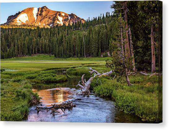 First Light On Lassen From Upper Meadow Canvas Print