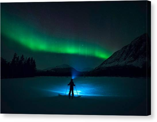 Flash Canvas Print - First Love by Tor-Ivar Naess