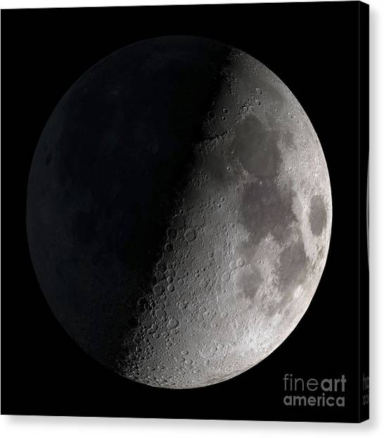 Moon Canvas Print - First Quarter Moon by Stocktrek Images