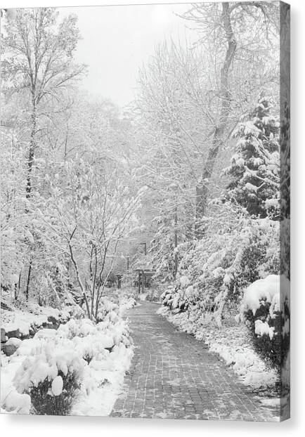 Brigham Young Byu Canvas Print - First Snow by Andrew Broekhuijsen