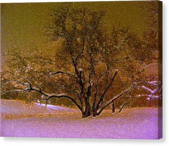 First Snowfall Canvas Print by Sherwanda Irvin