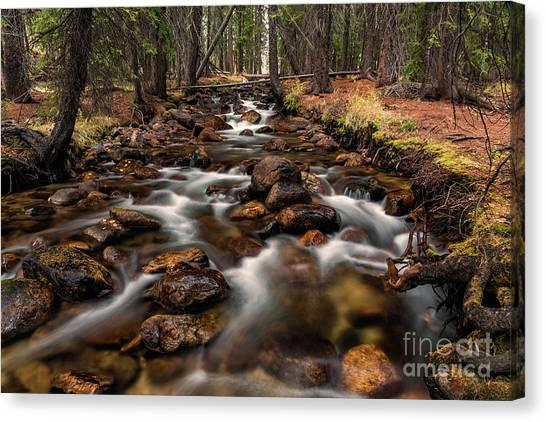 Fishhook Creek Waterscape Art By Kaylyn Franks Canvas Print