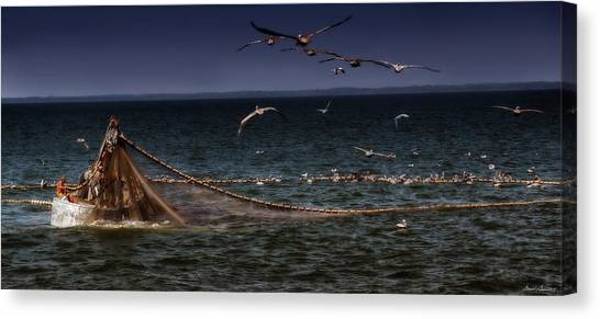 Fishing For Menhaden On The Chesapeake Bay Canvas Print