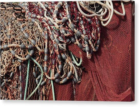 Red Knot Canvas Print - Fishing Nets And Led Weights by Carlos Caetano