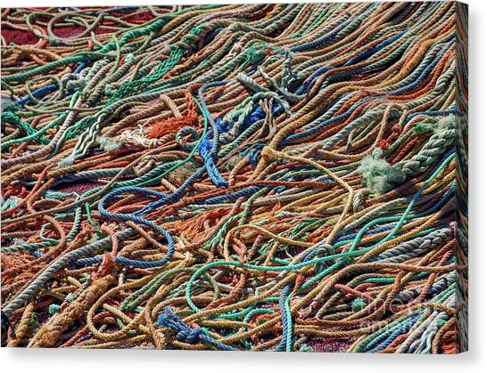Red Knot Canvas Print - Fishing Ropes by Carlos Caetano